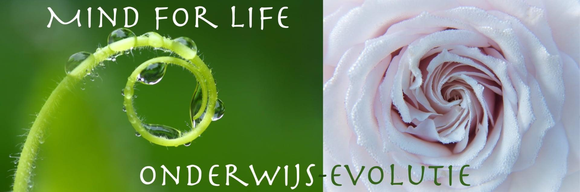banner onderwijs vernieuwing mind for life